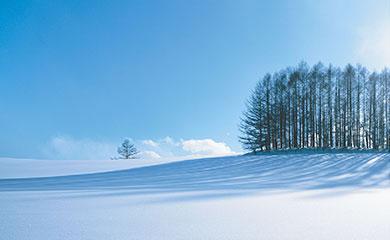 """波兰 拉塞尔 LACCY, 被公认为""""定义美好家居生活""""的环保品牌。"""